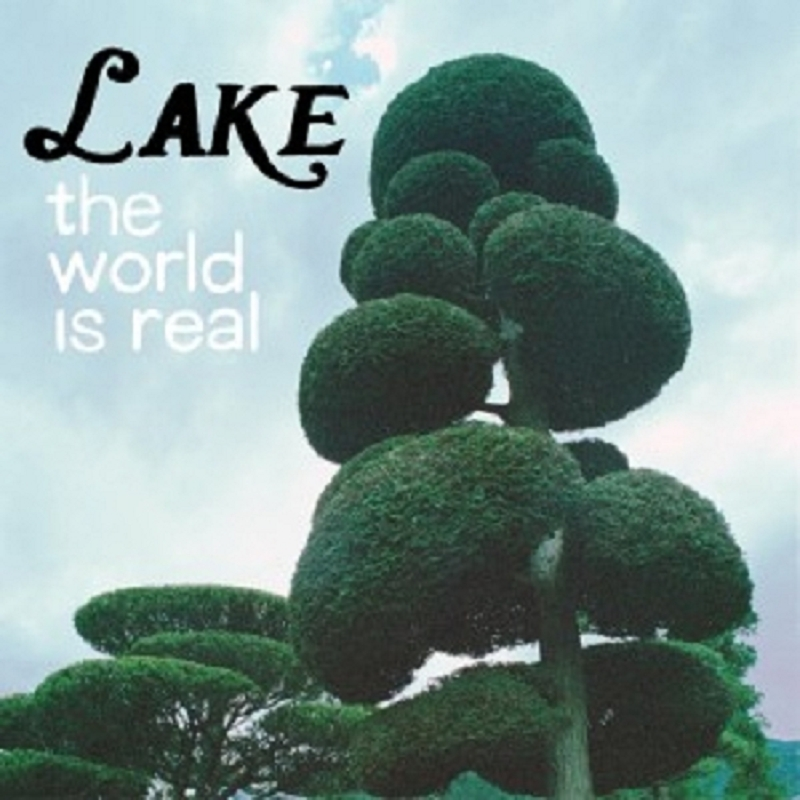 LAKE - THE WORLD IS REAL  VINYL LP  11 TRACKS INDEPENDENT ROCK  NEU